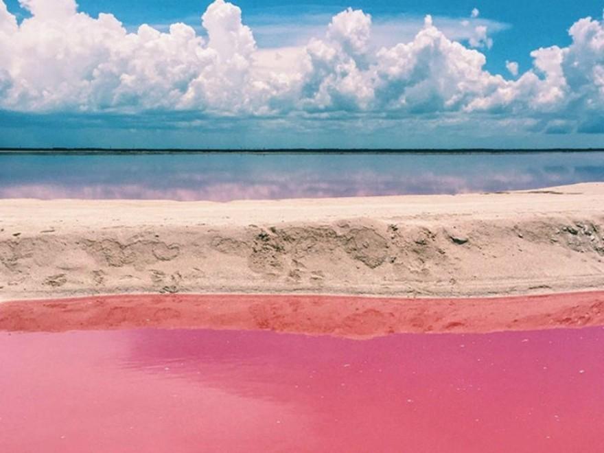 【中文坎昆一日遊B】 粉紅湖+火烈鳥自然保護區+天然瑪雅泥浴