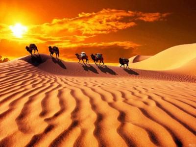 純玩.北疆喀納斯湖、魔鬼城8日遊