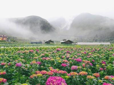 陽明山國家公園及溫泉觀光